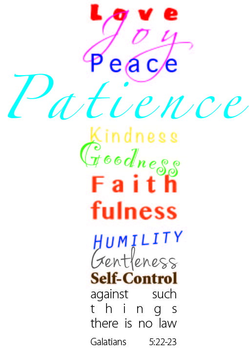 Love Joy Peace Patience Kindness Goodness Faithfulness Humility Gentleness Self-Control against such things there is no law Galatians 5:22-23